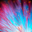 canvas print picture - Abstract blurred red and blue light, flower natural background.