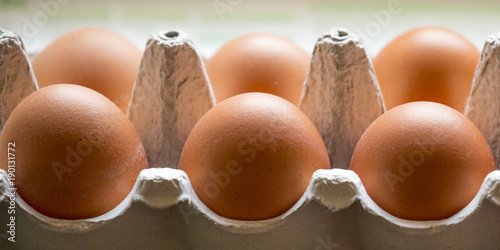 Door stickers Horses bio eggs in a box