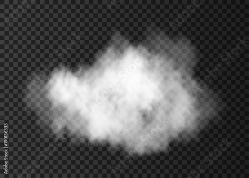 Photo sur Aluminium Fumee White smoke puff isolated on transparent background.