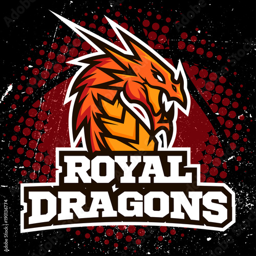 Fotografie, Obraz  Dragon sport logo basketball design