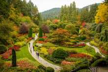 Butchart Botanical Garden In V...