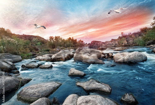 Foto op Plexiglas Groen blauw Waterfall on mountain river with seagulls