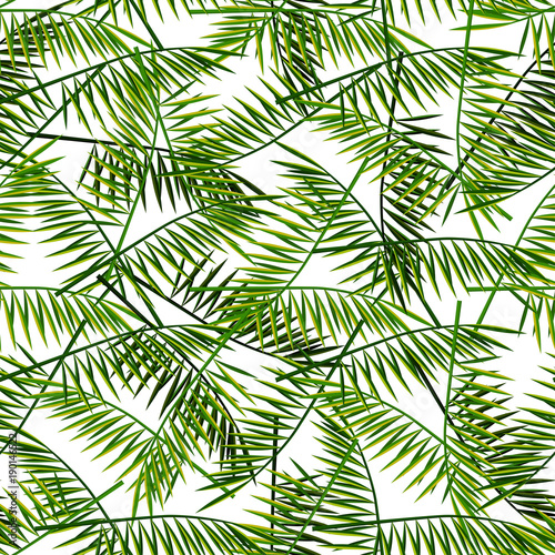 Ingelijste posters Tropische Bladeren Vector seamless pattern with palm leaves. Summer illustration. Exotic tropical foliage.