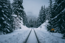 Train Tracks In Winter Snow Through Forest