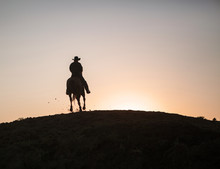 Cowboy On A Horse In North Dakota, USA