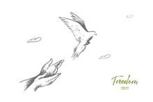 Freedom Concept. Hand Drawn Pi...