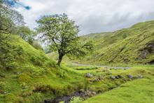 Amazing Scottish Landscape Wit...