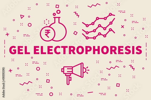 Conceptual business illustration with the words gel electrophoresis Fototapet