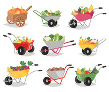Vegetables In Wheelbarrow Vect...