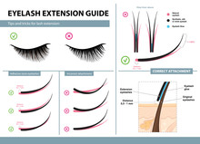 Eyelash Extension Guide. Tips ...