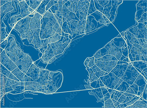 Canvas Print Blue and White vector city map of Istanbul with well organized separated layers