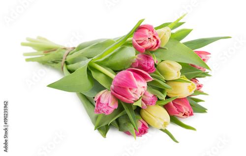 Cuadros en Lienzo Beautiful tulips bouquet