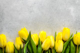 Fototapeta Tulipany - Yellow tulips, spring easter background or anniversary gift for mothers day or card for women's day at 8 march