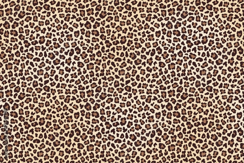 Leopard spotted fur texture Canvas Print