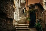 Fototapeta Fototapety na drzwi - Riomaggiore alley
