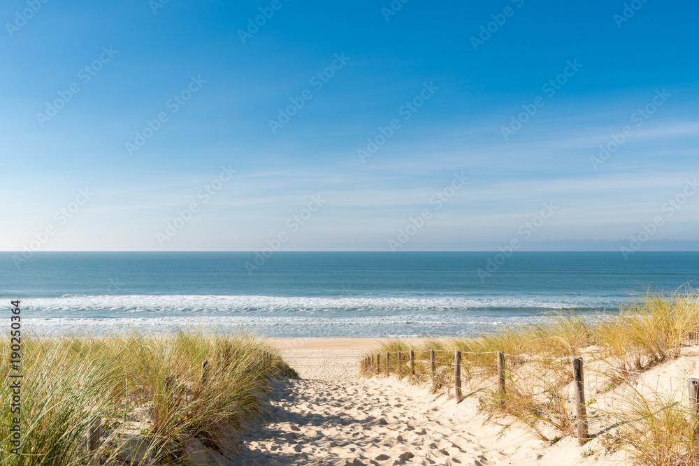 Fototapety, obrazy: CAP FERRET (Bassin d'Arcachon, France), la plage des Dunes