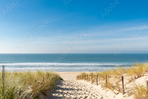 CAP FERRET (Bassin d'Arcachon, France), la plage des Dunes - 190250364