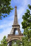 Fototapeta Fototapety z wieżą Eiffla - Eiffel tower in the embrace of nature