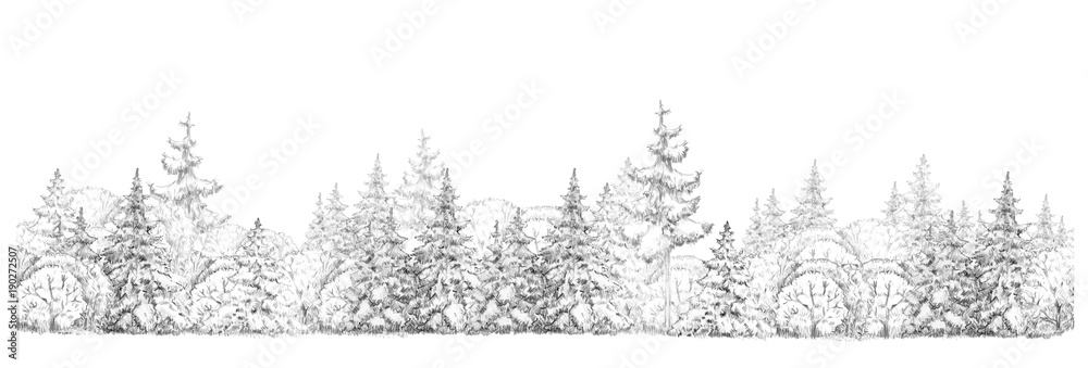 Fototapeta Winter  forest   drawing  in black and white, seamless element, isolated border.