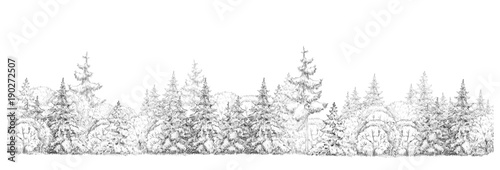 Fototapeta Winter  forest   drawing  in black and white, seamless element, isolated border. obraz