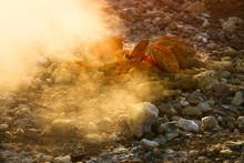 Summer. Italy. Volcano Of Solf...