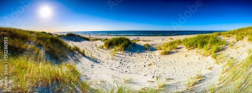 Foto auf Leinwand Strand Coast dunes beach sea, panorama