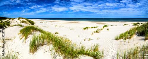 Foto auf Gartenposter Strand Coast dunes beach sea, panorama