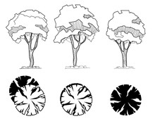 Set Of Trees For Decoration An...