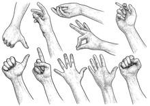 Hand Gesture Collection Illust...