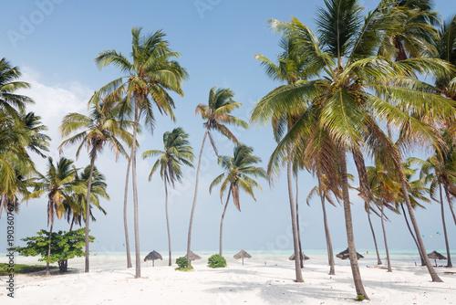 Foto auf Gartenposter Strand White sand beach with palm trees, Zanzibar, Tanzania