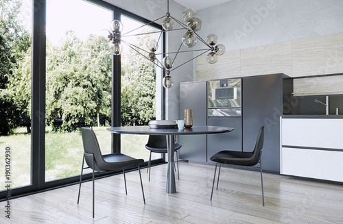 Modern interior design dining room, kitchen, garden view