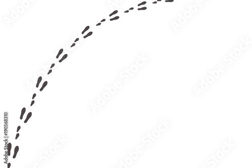 Fototapeta premium Hasenspuren