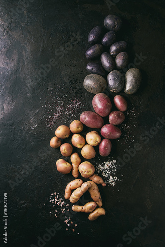 Variety of raw uncooked organic potatoes different kind and colors red, yellow, purple with various of salt over dark texture background. Top view, space