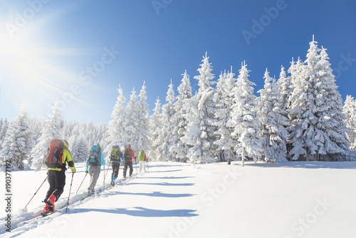 Group of backcountry skiers going up towards a snow covered chri Canvas Print