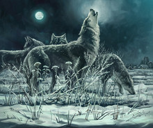 A Flock Of Wolves At Night, Th...