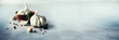 Leinwandbild Motiv Garlic, rosemary, black pepper, salt on grey concrete background. Top view, copy space. Banner