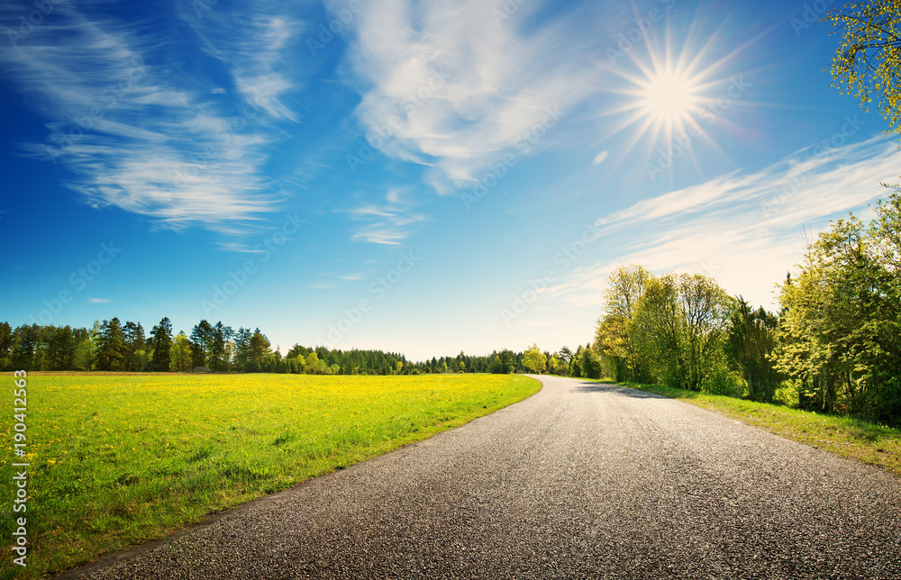 Fototapeta asphalt road panorama in countryside on sunny spring day.. Route in beautiful nature landscape with sun, blue sky, green grass and dandelions