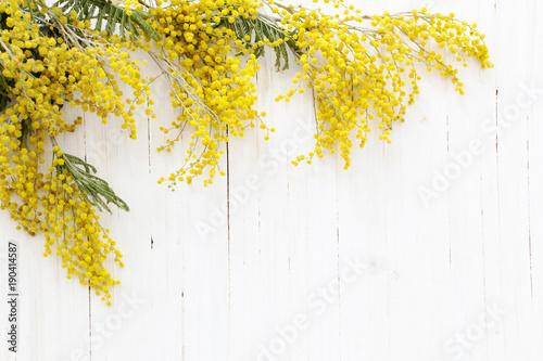 Fotobehang Bloemen mimosa on white wooden background