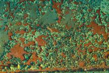 Rusty Red Metal Wall Weth Peel...