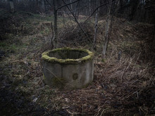 Abandoned Well In The Forest