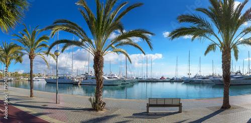 Fotografie, Obraz  Yachthafen in Palma de Mallorca