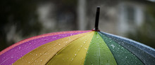 Close-up  Umbrella In Rainbow ...