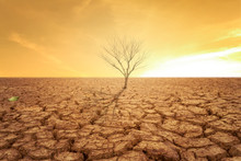 Drought Land And Hot Weather A...