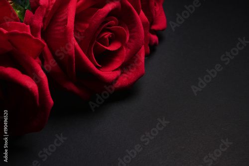 Close up of Red roses on black background. Free space for text