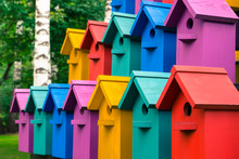 Colorful Houses For Birds.