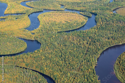 Vue aerienne Top view of forest river in autumn