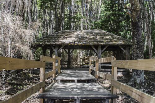 Tuinposter Weg in bos Bosque de Arrayanes, Neuquén Argentina