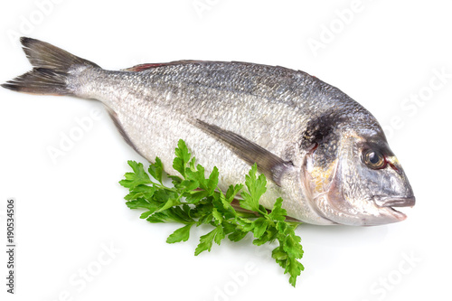 Foto op Aluminium Vis Fresh fish with green basil isolated in white background with clipping path.