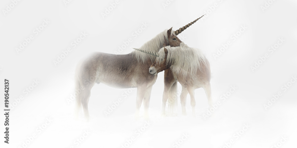 A pair of unicorns cuddling in the fog.