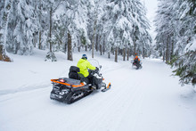 Snowmobile, Winter Forest, White Snow, Nature